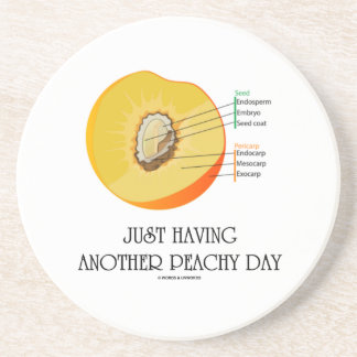 Just Having Another Peachy Day (Peach Anatomy) Drink Coasters