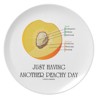 Just Having Another Peachy Day (Peach Anatomy) Dinner Plate