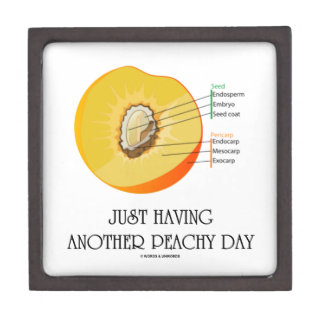 Just Having Another Peachy Day (Peach Anatomy) Premium Jewelry Box