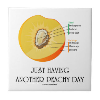 Just Having Another Peachy Day (Peach Anatomy) Ceramic Tile