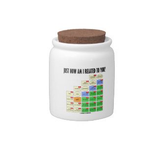 Just How Am I Related To You? (Genealogy) Candy Jars