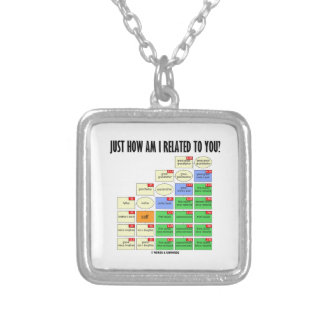 Just How Am I Related To You? (Genealogy) Silver Plated Necklace