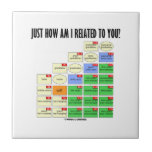 Just How Am I Related To You? (Genealogy) Ceramic Tiles