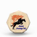 Just Jump It! Horse Awards