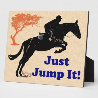 Just Jump It! Horse Display Plaque
