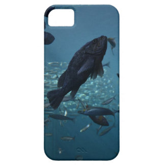 Just keep swimming... iPhone 5 cases