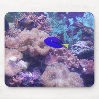 Just Keep Swimming Mousepads
