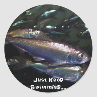 Just Keep Swimming.... Classic Round Sticker