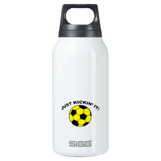 Just Kickin' It! 10 Oz Insulated SIGG Thermos Water Bottle