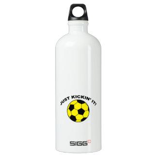 Just Kickin' It! SIGG Traveler 1.0L Water Bottle