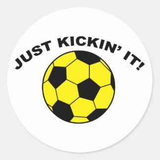 Just Kickin' It! Classic Round Sticker