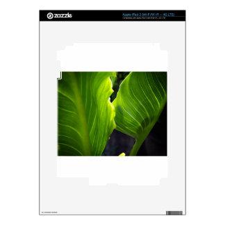 Just leaves iPad 3 skin