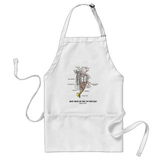 Just Look At Me In The Eye (Anatomical Humor) Adult Apron
