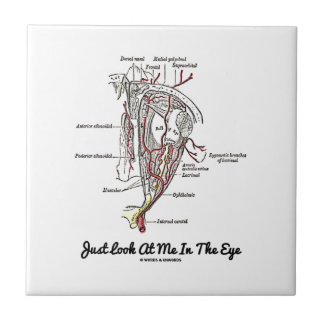 Just Look At Me In The Eye (Anatomy) Tile