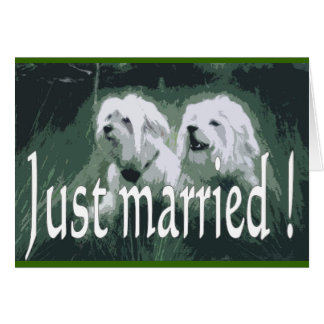 Just marry comics greeting card