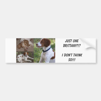 Just ONE Brittany?!?I don't think so!!! Car Bumper Sticker