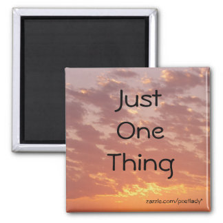 Just One Thing Magnet