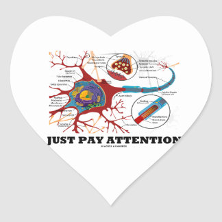 Just Pay Attention (Neuron / Synapse) Heart Sticker