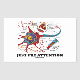 Just Pay Attention (Neuron / Synapse) Rectangular Sticker