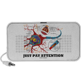 Just Pay Attention (Neuron / Synapse) Speaker System