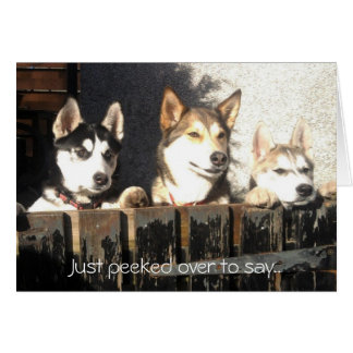 Just peeked over to say.. stationery note card