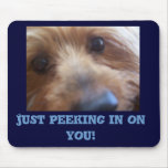 Just peeking in on your mouse mat