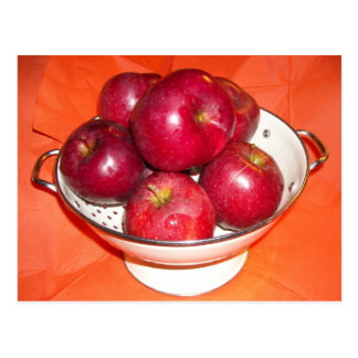 Just Picked Apples Postcard