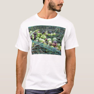 Just picked olives on the net during harvest time T-Shirt