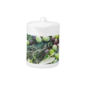 Just picked olives on the net during harvest time teapot