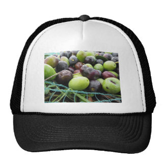 Just picked olives on the net during harvest time trucker hat