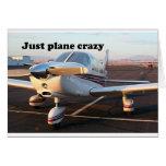 Just plane crazy: aircraft, Page, Arizona, USA 13 Greeting Card