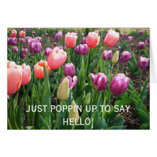JUST POPPIN UP TO SAY HELLO! Blank Card