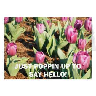 JUST POPPIN UP TO SAY HELLO! CARD