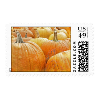Just Pumpkins in the Patch Postage