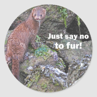 """Just Say No to Fur"" Mink Classic Round Sticker"