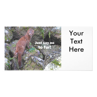 """Just Say No to Fur"" Mink Photo Card"