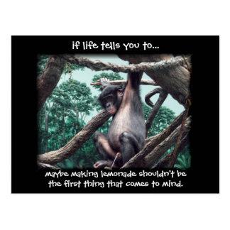 just sayin' ~ funny bonobo post card