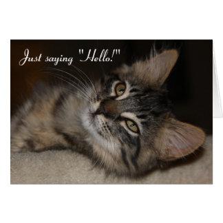 Just Saying Hello Kitten Card