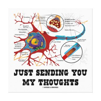Just Sending You My Thoughts Neuron Synapse Canvas Print