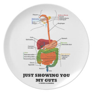 Just Showing You My Guts (Digestive System Humor) Party Plate