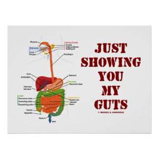 Just Showing You My Guts Digestive System Humor Print