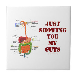 Just Showing You My Guts (Digestive System Humor) Ceramic Tiles
