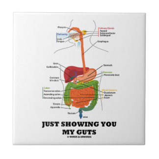 Just Showing You My Guts (Digestive System Humor) Tile