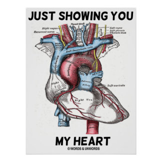 Just Showing You My Heart (Heart Anatomy) Poster