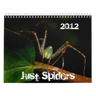 Just Spiders Calendar, 2012 Calendar