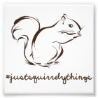 Just Squirrely Things Squirrel Photo Print
