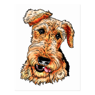 Just the Airedale Terrier Postcard