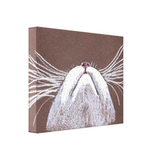JUST THE CATS WHISKERS 2 CANVAS PRINTS