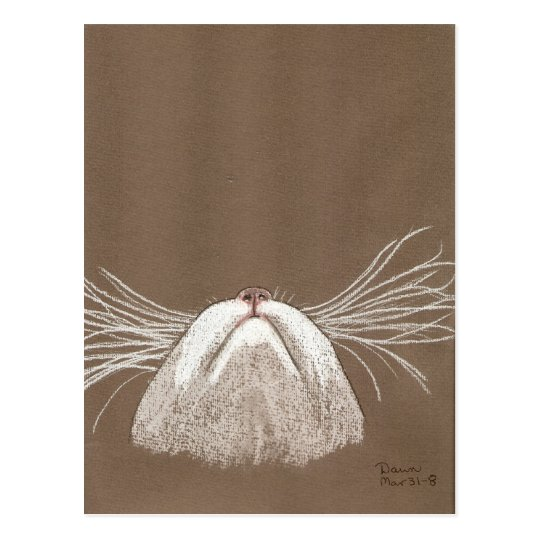 just the cats whiskers postcard