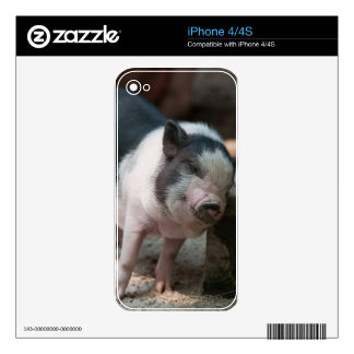 Just The Right Spot Piglet iPhone 4 Skins